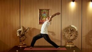 Warrior Pose (Virabhadrasana)